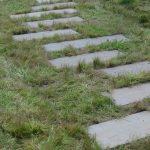 sandsten trædesten gennem naturgræs naturgrund