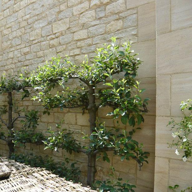 Stor muret sandstensvæg af lyse sandsten