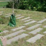 enggræs LAR permeabel belægning sandsten natursten