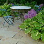 natursten sandsten Sandstone udstilling Sjælland hosta pryd allium purple sensation hasselurt beige limestone fliser