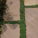 natursten sandsten Sandstone udstilling Sjælland timian fugeplanter fuge